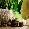 cocoa candles and aloe vera leaves