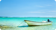 row boat on tropical waters